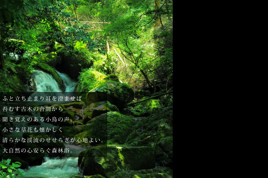 秋川渓谷の一日をごゆるりと